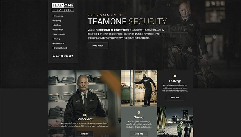 Team One Security