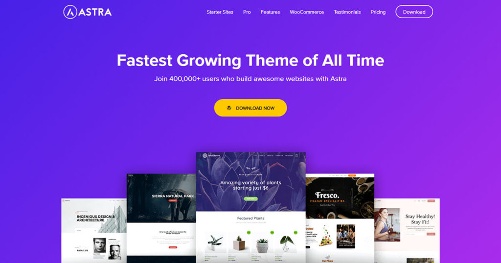 astra-wordpress-starter-theme