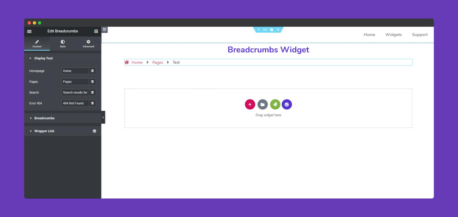 options of Breadcrumbs Widget