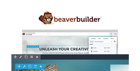 designing with beaver builder