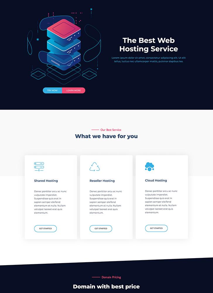 hosting agency 1